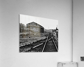 DSC_2753  Acrylic Print