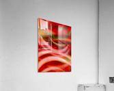 Rhythms of Samba  Acrylic Print