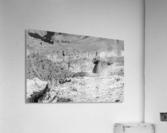 Grand Canyon South Rim  Acrylic Print