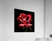 Graffiti Rose  Acrylic Print