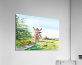 Landscapes Of California Fort Ross Windmill  Acrylic Print