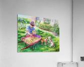 Apples Harvest  Acrylic Print