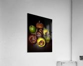 Acorn arrangement  Acrylic Print
