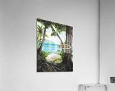 Collection COSTA RICA-Matapalo  Impression acrylique