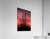 Liberty Missouri Sunset   Acrylic Print