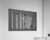 Bird and Shadows  Acrylic Print