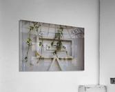 LetterBox  Acrylic Print