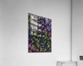 The Energy of Dance  Acrylic Print
