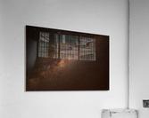 AdriaanPrinsloo 9928  Acrylic Print