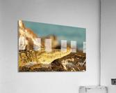 AdriaanPrinsloo 8074  Acrylic Print