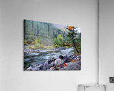 Old Pipeline Bed Trail  Acrylic Print