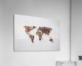 Light Continent Desertia  Acrylic Print