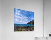 Hawaii Cliff and Coastline Square Panorama  Acrylic Print