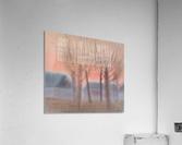 DSC_1009  Acrylic Print