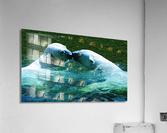 Kiss Me Polar Bears  Acrylic Print