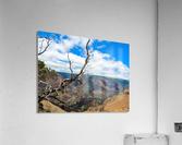 Wild Kauai 2  Acrylic Print