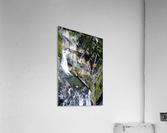 From Bridge to Stream  Acrylic Print