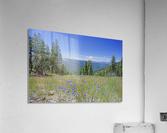Sierra Nevada in Spring 7 of 8  Acrylic Print