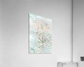 Daltana Pastel Floral Bina  Acrylic Print