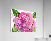 Magnificent Rose  Acrylic Print
