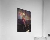 Chic Shack VI  Acrylic Print