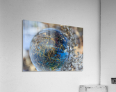 Feuillage  Acrylic Print