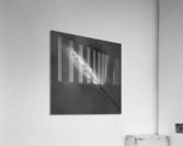 Epine  Acrylic Print