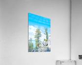 Top of the Mountain California   Acrylic Print