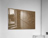 Patterns Of Nature ap 2120  Acrylic Print