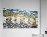 Water Colors ap 2562  Acrylic Print