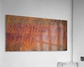 Rust ap 2510  Acrylic Print