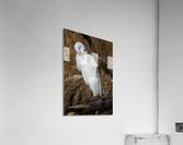 Great White Egret ap 2767  Acrylic Print
