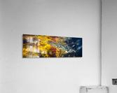 Leaves ap 2076  Acrylic Print