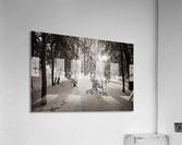Sunlight ap 2731 B&W  Acrylic Print