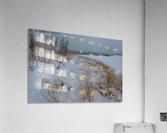 Duck Blind ap 2712  Acrylic Print