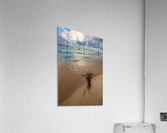 Reflections ap 2416  Acrylic Print