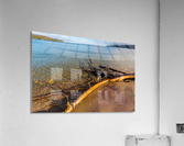 Driftwood ap 2481  Acrylic Print