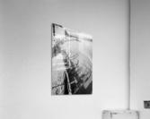 Driftwood ap 2482 B&W  Acrylic Print