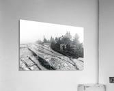 Lichen and Granite ap 2340 B&W  Acrylic Print