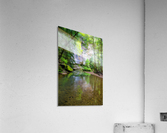 Queer Creek ap 2060  Acrylic Print