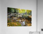 Reflections ap 2476  Acrylic Print