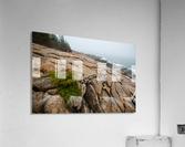 Lone Pine ap 2286  Acrylic Print