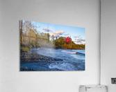 Big Red ap 2684  Acrylic Print