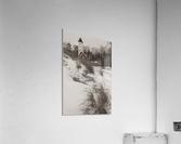 Lighthouse ap 2148  Acrylic Print