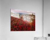 Bear Rocks Preserve apmi 1792  Impression acrylique