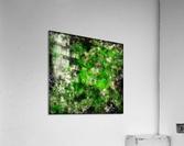 Green noise  Acrylic Print