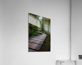 This is the Way  Acrylic Print
