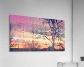 winter sky lavender  Acrylic Print