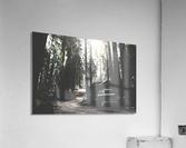 Big Sur Camping  Acrylic Print