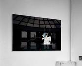 Egress  Acrylic Print